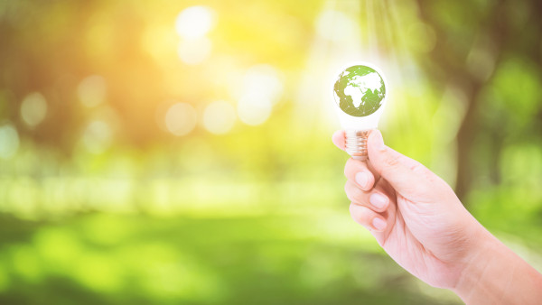 5 Proven Strategies Our Commercial Electrical Company Recommends for Going Green and Saving Money